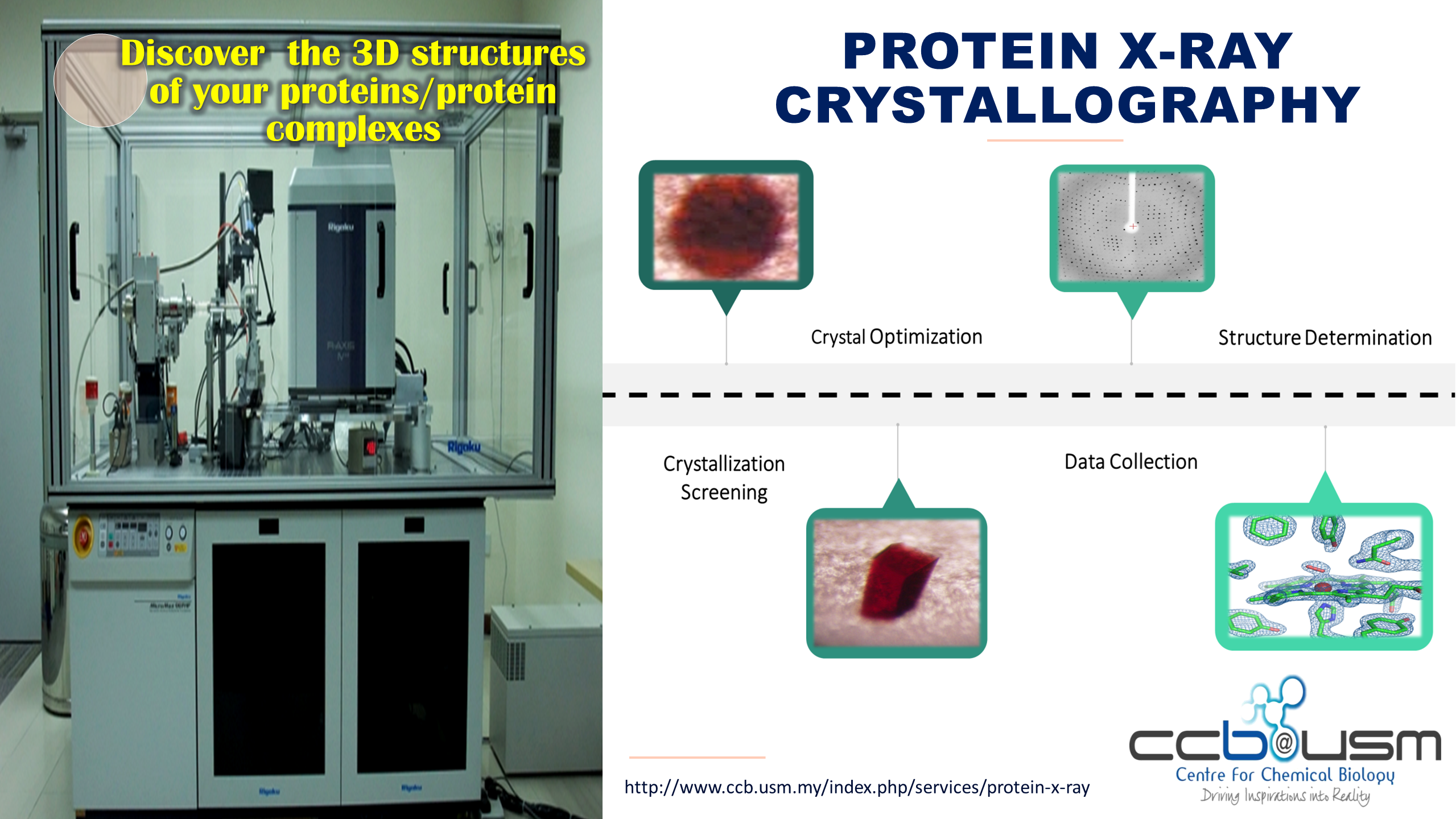 Protein X ray crystallography